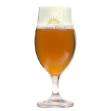 Green Flash beer glass 49 cl